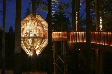 Onion-shaped restaurant in a redwood forest. Seems legit.
