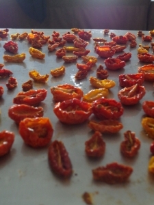 Over dried tomatoes